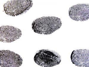 ประเภทของลายนิ้วมือ และประโยชน์ของลายนิ้วมือ กับการใช้งานในด้านต่างๆ